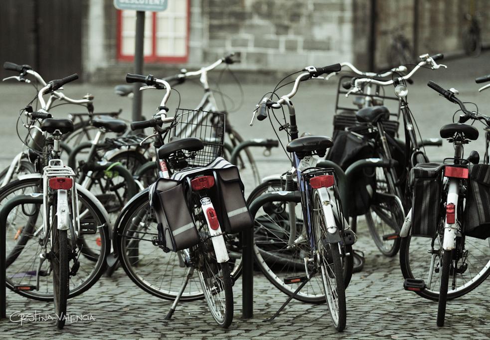 bikes-flickr