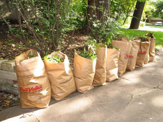 yard-waste-bags-flickr