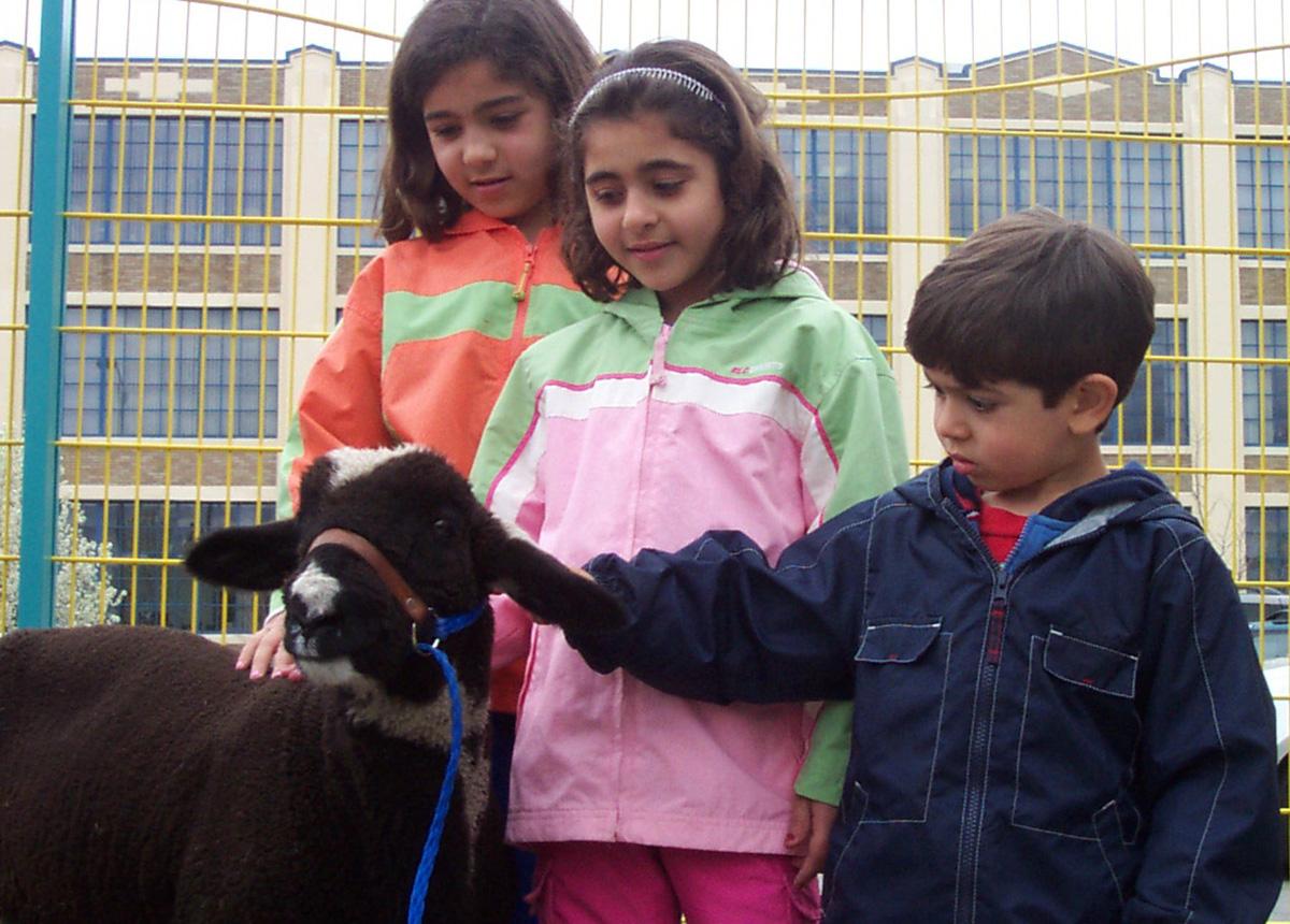 childrens-museum-farmfriends