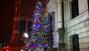 providence-christmas-tree-2015
